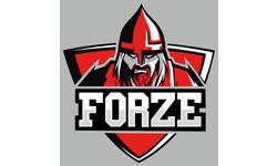 forZe