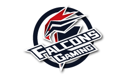 FalconsGaming