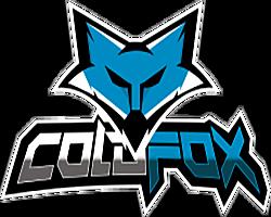 ColdFoxe-Sports