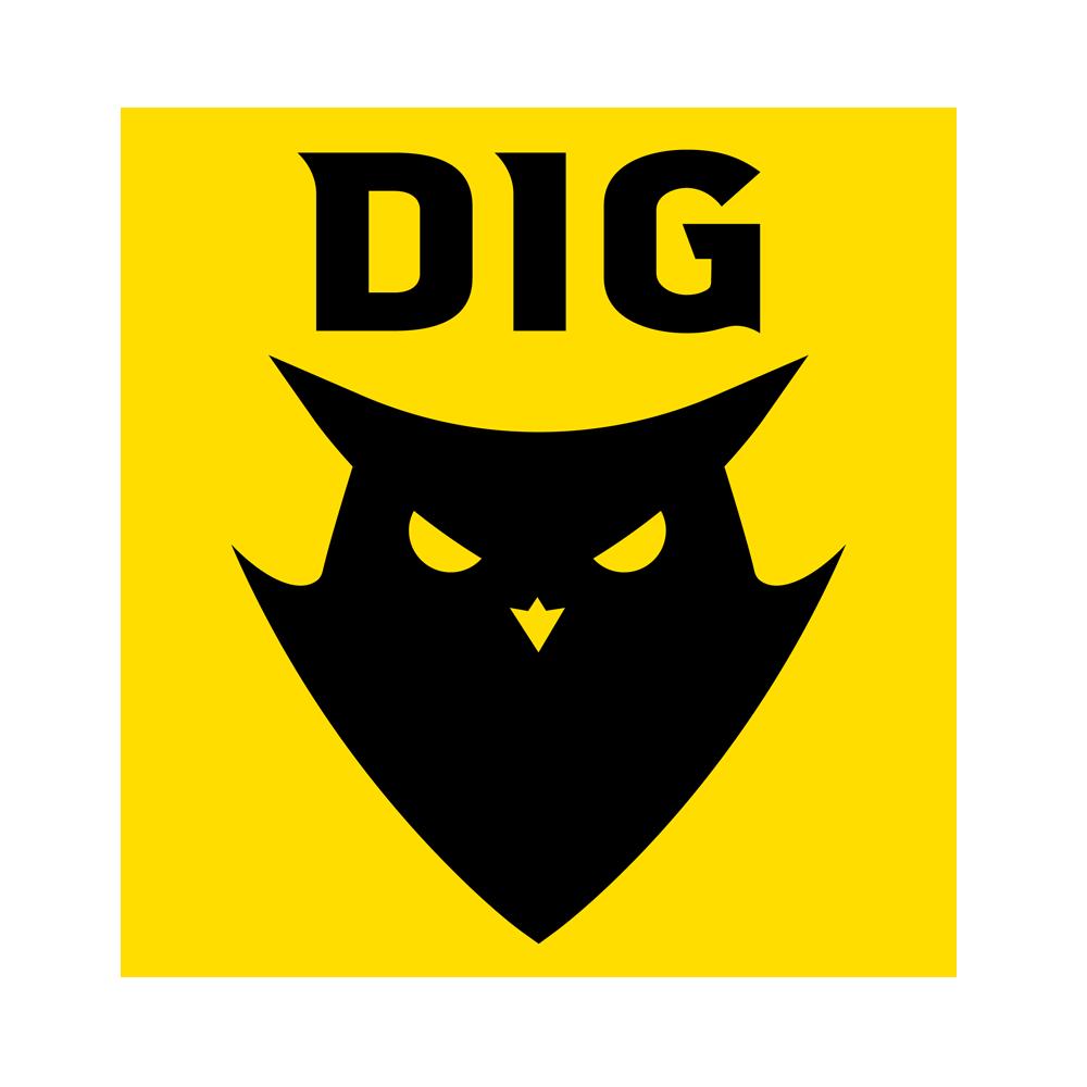 DIG.A
